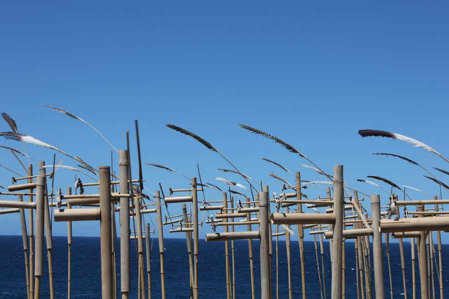 Sculpture By The Sea, Sydney